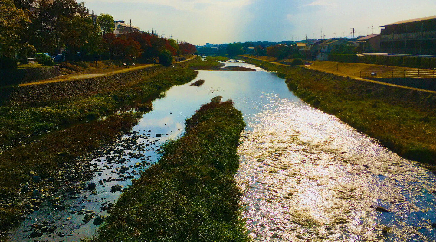 京都は伝統と革新の古都でありながら自然が近い